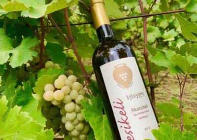 Sesikeli Bottle in Vineyard